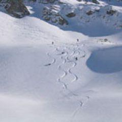 Engelberg powder skiing